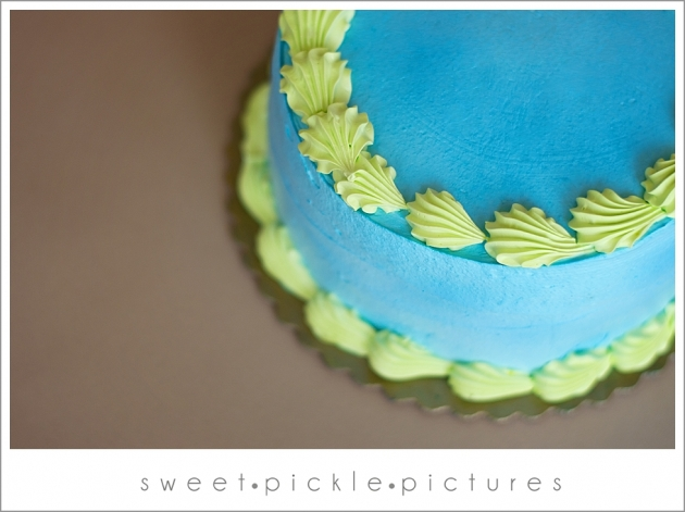 Sweet Pickle Pictures » Providing family, child, newborn, maternity ...